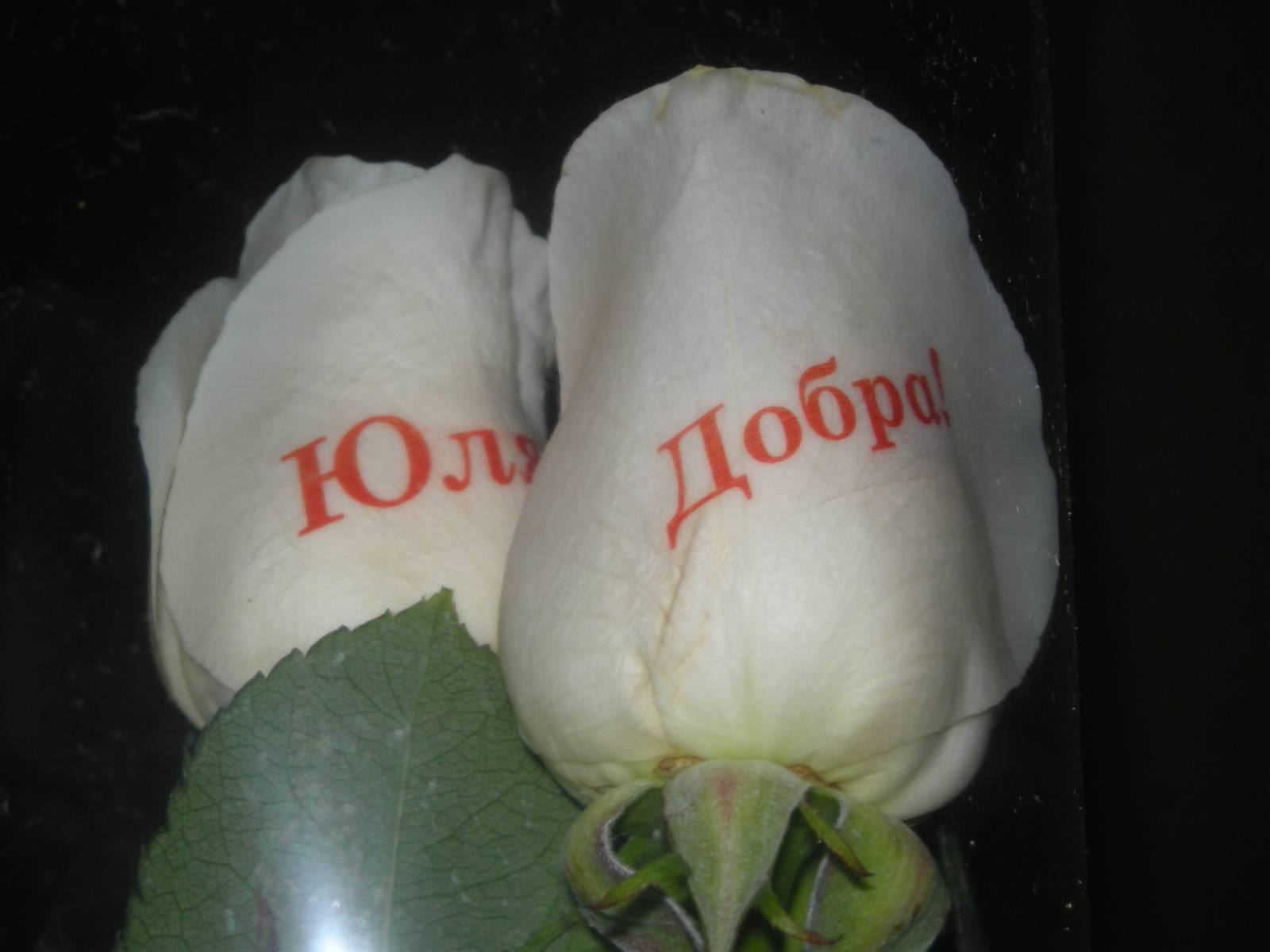 Магазин говорящие цветы, доставку